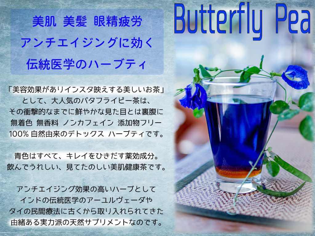 バタフライピー 奇跡の青いお茶